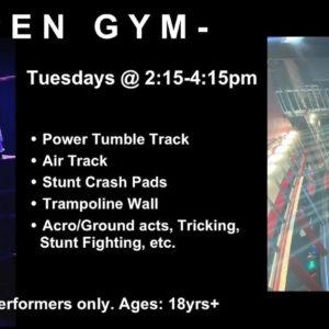 NEW! Pro Gym Announcement